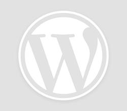 Miglior Portasci Magnetici Nordrive: prezzo e offerta Amazon